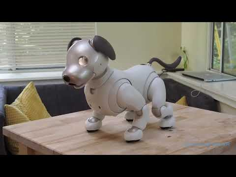 Sony aibo (2018) starting up