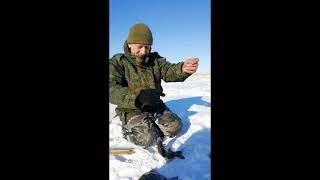 Рыбалка на карася в начале марта