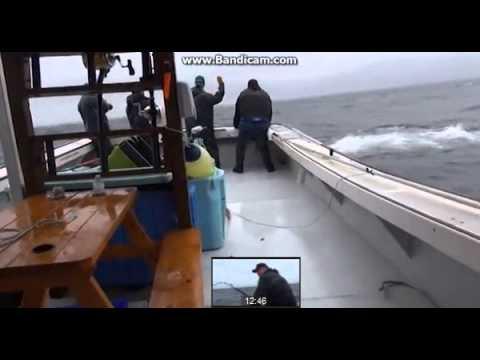 ตกปลา ใหญ่ที่สุดในโลก