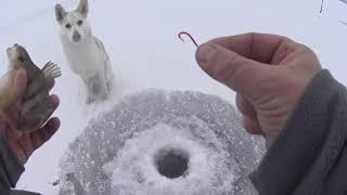 Рыбалка на Песчанке по Первому льду !!!