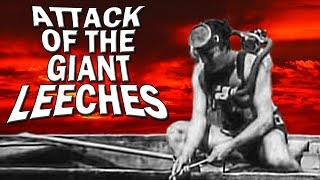 Attack of the Giant Leeches: Dark Corners Review