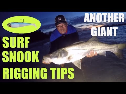 Another Giant Snook, Lure Rigging Tips For Surf Fishing