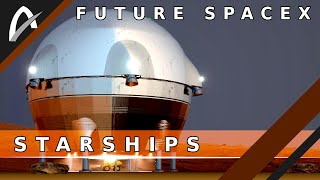 Future SpaceX BFR/Starships?