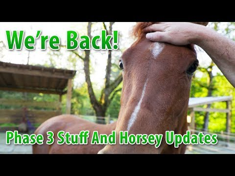 We're Back! Phase 3 Stuff And Horsey Updates