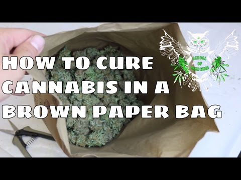 How to Cure Weed in a Brown Paper Bag | Drying Nugs | Harvesting and Curing Marijuana