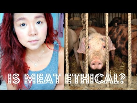 IS IT MORAL TO EAT MEAT? | Cheap Lazy Talks