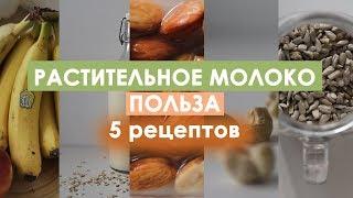 Как сделать растительное молоко?/ 5 РЕЦЕПТОВ/ + Польза растительного молока