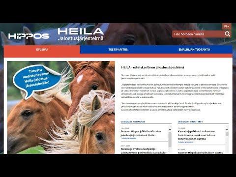 Heila Hippos