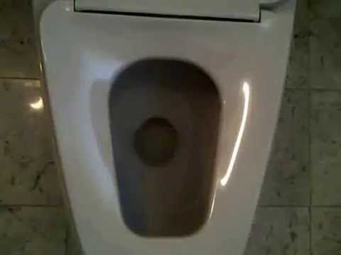American Standard Toilet Pallas Plaza Youtube