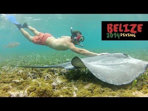 Scuba Diving & Snorkeling in Belize - 2014