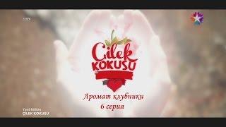 зАПАХ КЛУБНИКИ 6 СЕРИЯ РУССКАЯ ОЗВУЧКА