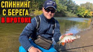 НИЖНЯЯ ВОЛГА Рыбалка в протоке СПИННИНГ с берега Часть 3 из 4