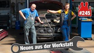 S-Max-Anlasser spuckt Funken!! 💥😳 | Horror-Geräusche im Ford Transit! | Vito mit Servo-Problemen