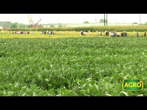 Estados Unidos: semillero argentino que hace pie entre los farmers (#737 2017-09-16)