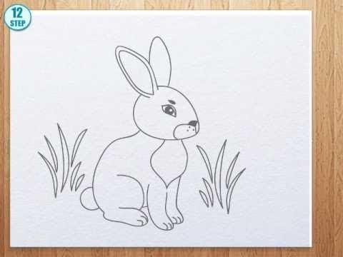 how to draw bunny