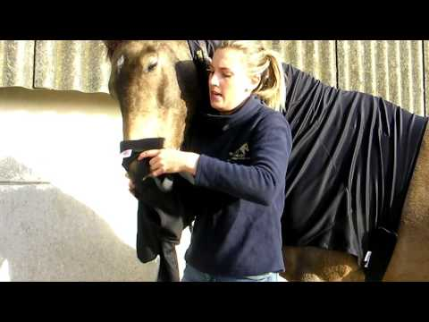 Snuggy Hoods NEW Weatherproof Turn Out Head Product Feature Video 2017