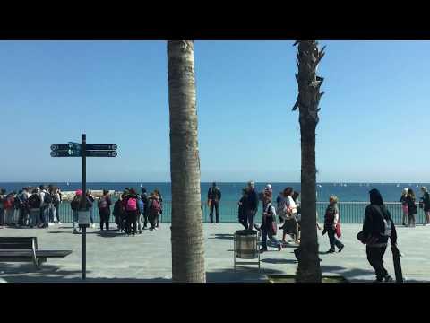 Barceloneta Beach - Gorgeous views of the Passeig Maritim and the Mediterranean Sea