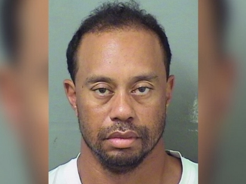 Associated Press: Tiger Woods Arrested in Florida for DUI