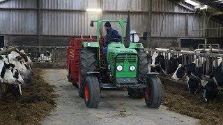 Kuilvoer snijden voor en voeren aan de melkkoeien Trekkerweb