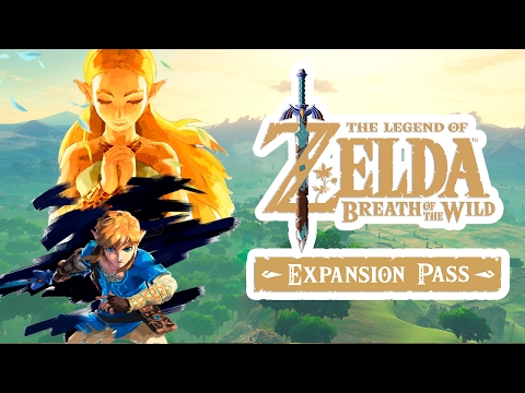 Image result for breath of the wild expansion pass