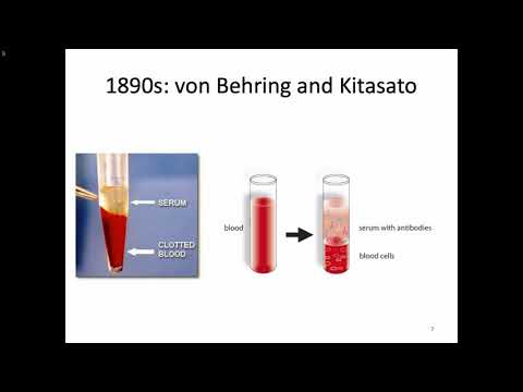 Immunology Fall 2019 Lecture 6: Antigens And Antibodies
