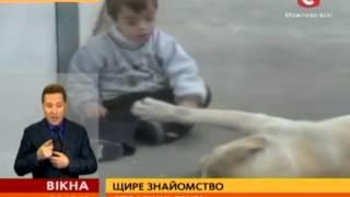 Мама сняла трогательное видео общения 3-летнего сына с собакой - Вікна-новини - 02.10.2013