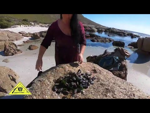 Coastal Foraging [Catch Clean Cook] South Africa