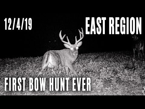 East | First Ever Bow Hunt, Ohio Target Bucks Update