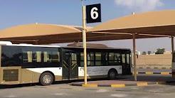 Public Transport of Ajman