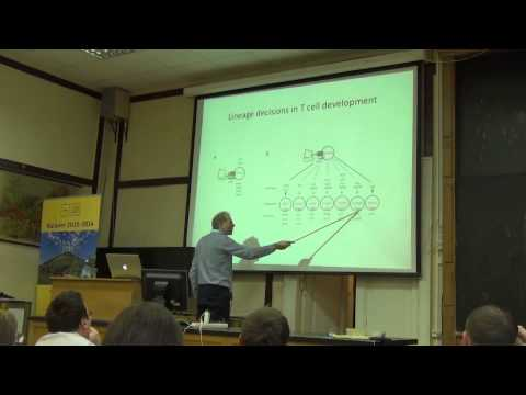 6. The immune system of jawed vertebrates: III. Amphibians and birds | Thomas Boehm | Лекториум