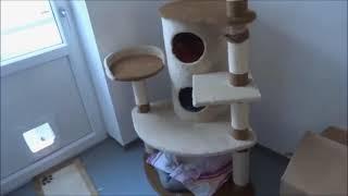 ✴Игрушка трек для кошек Kong Glide 'n Seek.✴