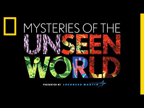 Mysteries of the Unseen World | National Geographic