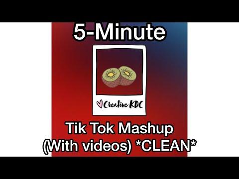 5-Minute Tik Tok Mashup (with Videos!) *CLEAN*