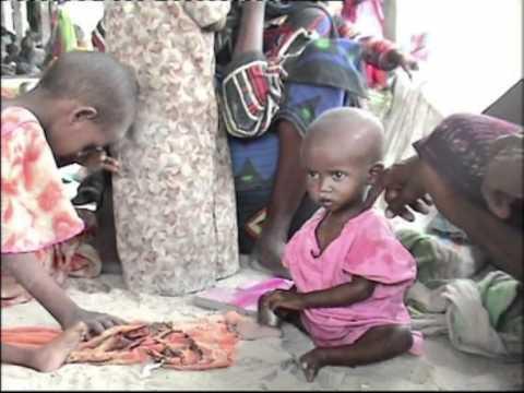 Survival struggle against Somalia's drought