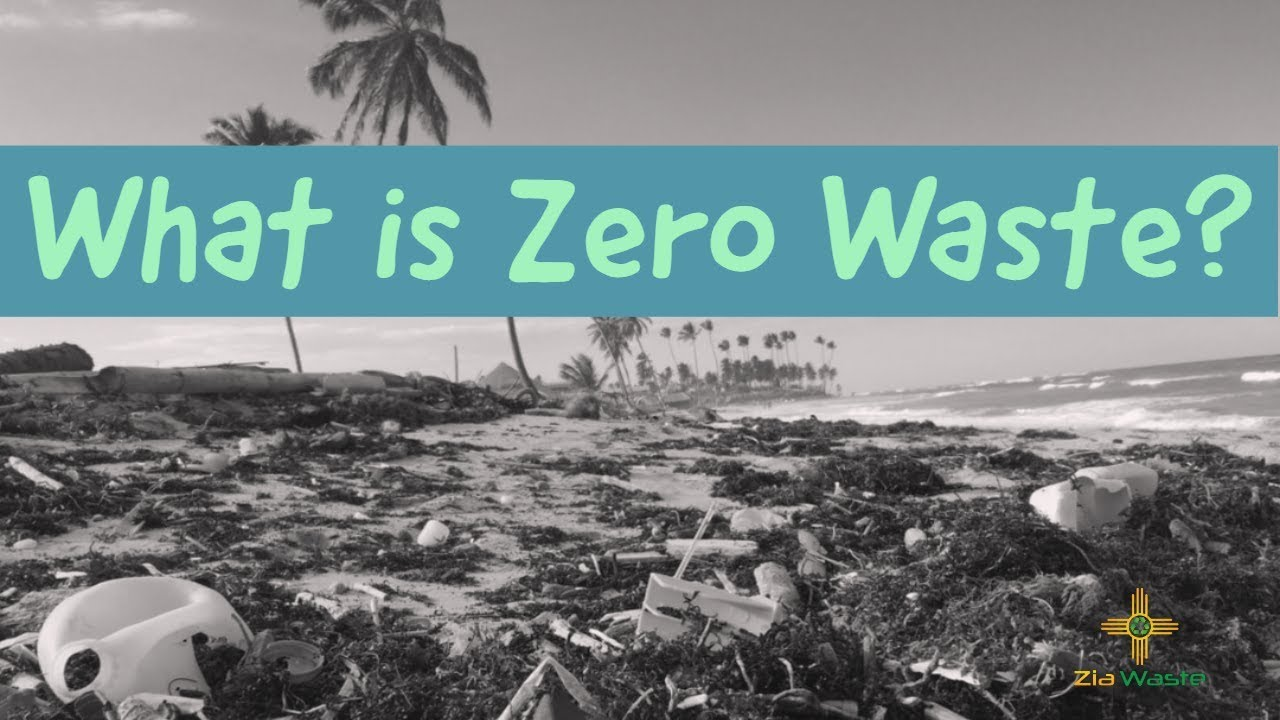 What is Zero Waste? The Truth about Zero Waste and How it Got Started