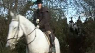Island Foxhounds first hunt of the season at Ferns Co.Wexford. Irel...