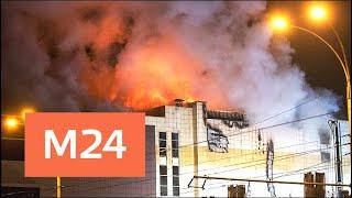 Смотреть видео Власти Томской области подтвердили смерть на пожаре в Кемерове детей из Томска - Москва 24 онлайн