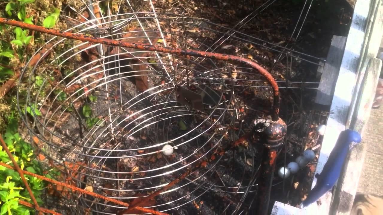 100 backyard roller coaster kits backyard gardening tips