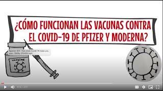 ¿Cómo funcionan las vacunas contra el Covid-19?