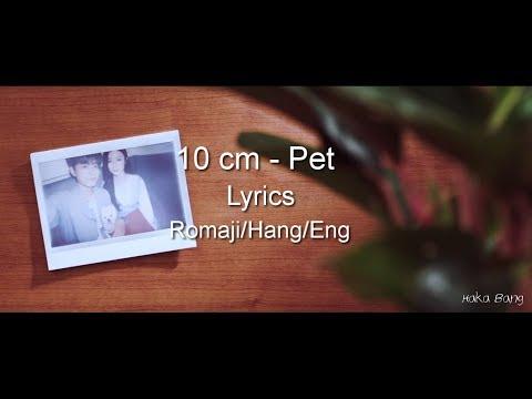 10 Cm - Pet Lyrics (Rom/Hang/Eng)