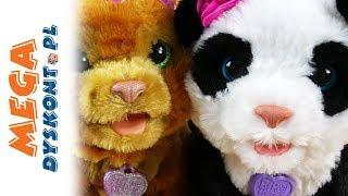 Furreal Friends • Panda Pom Pom & Głodny Miś Woodland Sparkle • Interaktywne zwierzęta • Hasbro