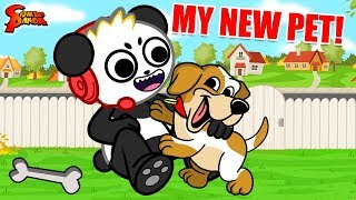 Playing with my NEW PUPPY! Let's Play Little Friends with Combo Panda
