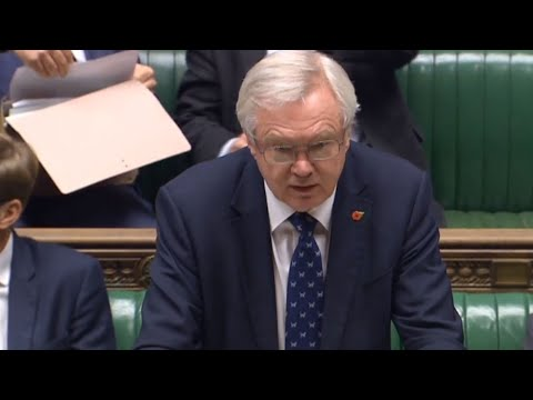 David Davis says parliament will be given time to debate and vote on the final agreement
