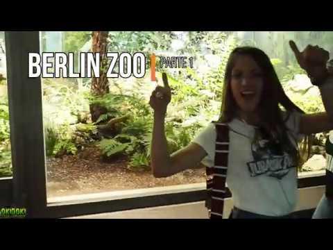 BERLIN ZOO Pt. 1 🐊🐠🐍 Aquarium & Reptiles