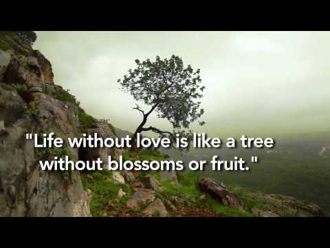 Kahlil Gibran Quote on Love