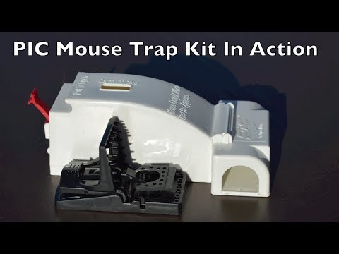 PIC Mouse Tap Kit In Action.