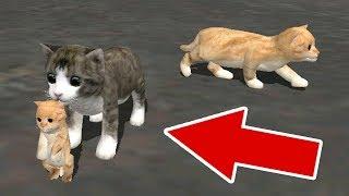 СИМУЛЯТОР КОШКИ РОДИЛСЯ КОТЕНОК в Cat Sim