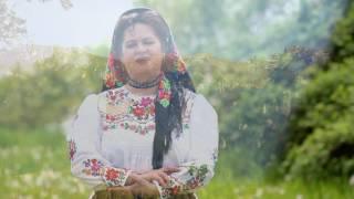 Hermina Marc Iluti - Codrule cu frunza rara