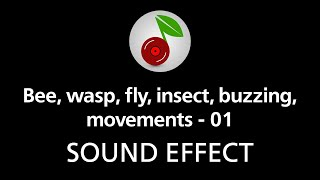 Bee, wasp, fly, insect, buzzing, movements - 01, sound effect