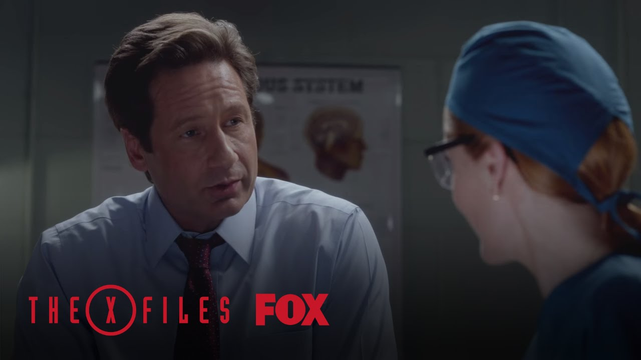 Download Scully And Mulder Guess The Monster | Season 10 Ep. 3 | THE X-FILES
